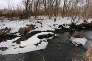 Stream bank subsidence is a major source of pollution in Iowa's rivers and stream, including Frog Creek.